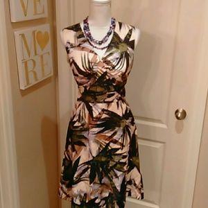 Banana Republic Summer Dress sz 8